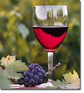 a picture of oregon wine tours